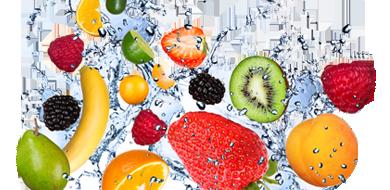 Contamos con una gran variedad de productos para aplicaciones de refrigeración | Totaline Argentina